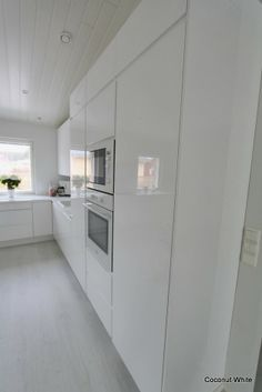 Coconut White: White , Modern Kitchen