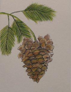 Watercolor Pine Cone  Card Hand Painted by LisasPaintedCrafts