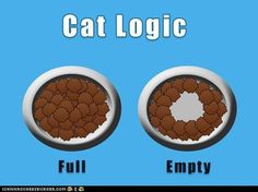 In this installment of cat humor, the fun folks at icanhascheezburger.com show what cats really consider an empty dish......