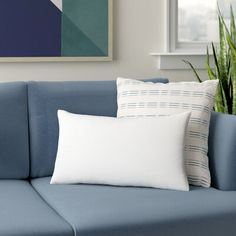 Wayfair Basics Pillow Insert & Reviews   Wayfair Orange Area Rug, Blue Area Rugs, Teal Pillow Cases, Pillow Inserts, Pillow Covers, Door Curtains, Curtain Door, Delta Children, Swivel Glider