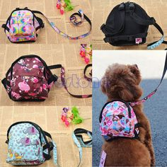 Pet Dog Bag Backpack Outdoor Travel Carrier For Dog Puppy Cats With Leash dog backpack breathable pet bags shoulder pet carrier Pet Bag, Dog Backpack, Animal Room, Dog Items, Dog Travel, Pet Carriers, Vogue, Dog Supplies, Dog Accessories