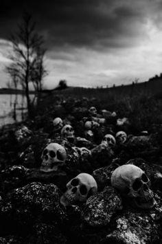 death skulls Black and White horror skull morbid dead skeleton bones Macabre path