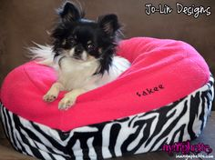 Look! Even my dog can lounge in a bed fit for a queen ;]  Google Image Result for http://iamnymphette.com/wp-content/uploads/2011/08/custom-name-chihuahua-pet-bed-zebra.jpg