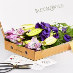 One Year Letterbox Flower Subscription