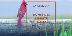 Los dones del Espíritu Santo: La ciencia | Sharon M Koenig