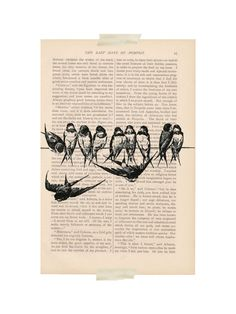 dictionary art vintage BIRDS on a WIRE 1 print by ExLibrisJournals, $9.00