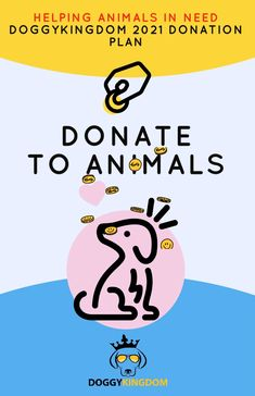Helping animals in need Charitable Contributions, Charitable Donations, Poodle Rescue, Rescue Dogs, Make You Feel, How Are You Feeling, Dog Organization, Personal Values