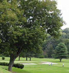 Municipal Golf Course in Buncombe County, North Carolina.
