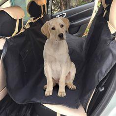 Parti tranquillo in vacanza col tuo cane, senza temere di ridurre la tua auto ad un ammasso...di peli!  Grazie a questo telo idrorepellente, facilissimo da disporre (mediante le sue fibbie ad incastro), proteggerai i sedili posteriori della macchinaogni volta che porterai a spasso il tuo cucciolone!    Con due tasche per gli accessori tuoi o di Fido, è in poliestere. Dim. 137 x 142,5 cm ca.