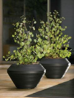 Outdoor Round Resin Tall Daniel Planter   A Weather Resistant Polyethylene  Highlights The 21 In. Outdoor Round Resin Tall Daniel Planter , Which Comes  In A ...