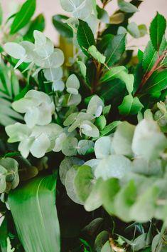 Botanical Wedding, Wedding Ideas, Fruit, Plants, The Fruit, Plant, Planting, Planets