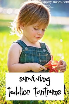 Dealing with Tantrums. Toddler Tantrums Happen. How do Parents Survive Toddler Tantrums?