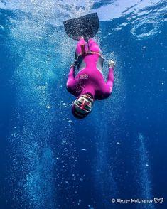95 Best Freediving images in 2019 | Diving, Ocean, Underwater