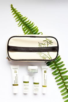 Natural retinol alternative products that are non-irritating and don't cause photosensitivity Organic Beauty, Organic Skin Care, Beauty Boutique, Healthy Beauty, Online Boutiques, Alternative, Natural, Products, Natural Skin Care