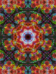 MultiColorful Photography at  by ALAYA GADEH  at ArtistRising.com, a division of Art.com
