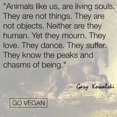 SomeONE. Not someTHING. Learn about the ugliness of Speciesism and the part YOU play init.