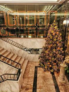 Take advantage of our best offers and pamper yourself at Divani Palace Acropolis. Christmas Offers, Christmas And New Year, Christmas Holidays, Acropolis, Athens Greece, Cat Design, Palace, Festive, Magic