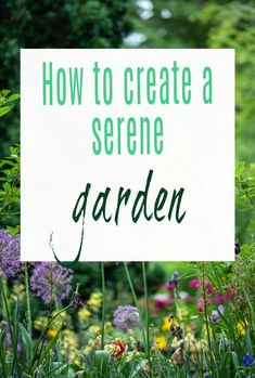 How to create a peaceful, tranquil and serene garden a look at both flowers and design. Gorgeous gardening tips and hacks #garden #gardendesign #gardening #gardeningtips Beautiful Space, Beautiful Gardens, Beautiful Homes, Pond Liner, Living Fence, Wooden Sheds, Garden Spaces, Tropical Garden, Home Hacks