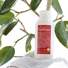 natural shampoo additive free organic made in Japan
