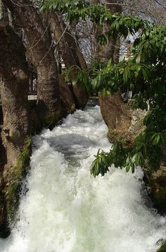 Edesseos (Vodas) river in Edessa town Macedonia Cyprus Greece, Macedonia Greece, Greece Vacation, Greece Travel, Pella Greece, Beautiful Places, Beautiful Pictures, Beautiful Scenery, Myconos