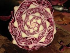 cabbage fancy