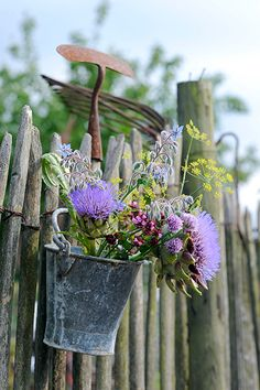 Old Galvanized Bucket...hanging on the garden fence.