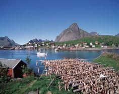 Lofoten, north of Norway