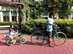 trailgator - Cerca con Google Bicycle, Vehicles, Google, Bike, Bicycle Kick, Bicycles, Car, Vehicle, Tools