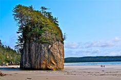 Post with 132 views. Lepus Beach, Haida Gwaii, British Columbia: by Curtis Guest Haida Gwaii, Atlantic Canada, Visit Canada, Western Canada, Chula, Natural Scenery, Vancouver Island, Canada Travel, British Columbia