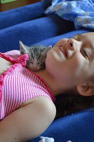Barbi konyhája: Csirkés alagút és egy új családtag ♥ Animals, Animales, Animaux, Animal, Animais