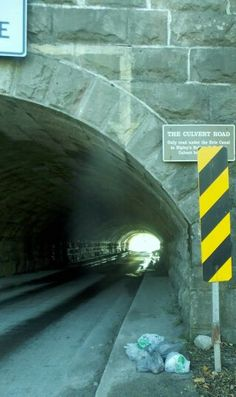 The only place where a road goes under the barge canal, in Ripley's, a few miles from my Family home.