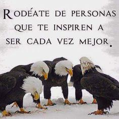 #FraseDelDia Rodèate de personas que te inspiren a ser cada vez mejor.  vía @marcelagomez165