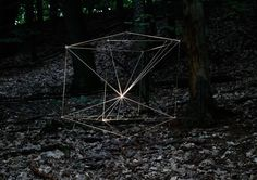Jonah Groeneboer. Forest Installation.