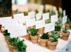 Vasinhos de plantas para lembrancinha - Foto- Jen Lynne