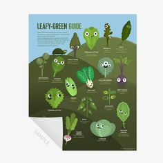 Leafy-Green, Salad Leaves Guide - Print