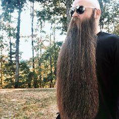 Mens Facial, Facial Hair, Bald With Beard, Grey Beards, Studs, Long Hair Styles, Beauty, Face Hair, Bald Head With Beard