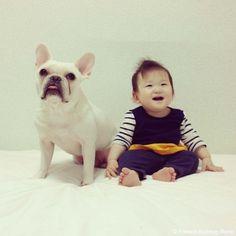 風船で遊んだよ♥️ #frenchbulldog #frenchie #dog #daughter #babygirl #フレンチブルドッグ #女の子