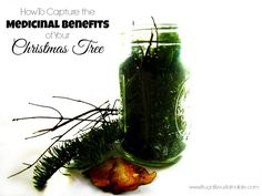 How To Capture The Medicinal Benefits Of Your Christmas Tree