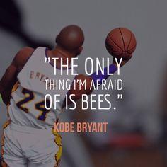 van scooby doo - 1000 id��es sur Kobe Bryant Quotes sur Pinterest | Kobe Bryant ...