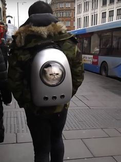 carry your pet anywhere with this cute capsule space carrier