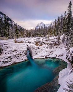 A long exposure from Yoho National park this past weekend loved getting out here and experiencing a true winter wonderland! by erikmcr