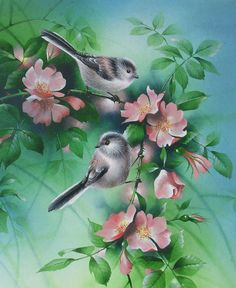 David Finney - Wildlife Artist & Illustrator | New Paintings
