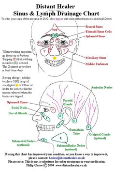 The Distant Healer Sinus and Lymph Drainage Chart. Click this image to order your copy The Distant Healer Sinus and Lymph Drainage Chart. Click this image to order your copy Sinus Drainage, Lymphatic Drainage Massage, Sinus Massage, Facial Massage, Facial Cupping, Massage Tips, Massage Therapy, Sinus Remedies, Cold Remedies