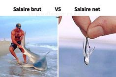 Funny Art, Funny Memes, Jokes, Image Gag, French Meme, Videos Fun, Ajin, Surfing, Funny Pictures
