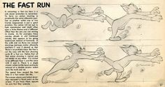 Preston Blair's four drawing run cycle of Tom. ★    CHARACTER DESIGN REFERENCES (www.facebook.com/CharacterDesignReferences & pinterest.com/characterdesigh) • Love Character Design? Join the Character Design Challenge (link→ www.facebook.com/groups/CharacterDesignChallenge) Share your unique vision of a theme every month, promote your art and make new friends in a community of over 20.000 artists!    ★