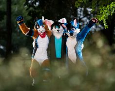 """Pawsome FurFriends""   Drapigney Fluffysky -  https://twitter.com/Drapigney_Fluff  Zelus Celsitudo -  https://twitter.com/ZelusCelsitudo  Saphi Fox -  https://twitter.com/SaphiFox    Photographer:  Furry creatures photography - https://www.facebook.com/FurCPhoto/   #furry #fursuit #FursuitFriday"