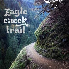Wildflowers & Whiskey: Hiking the Eagle Creek Trail