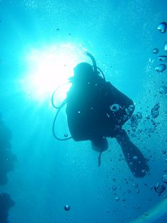 Scuba Diving :-) one bucket list think checked off! I love it!
