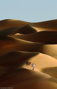 a photo i took recently in liwa deserts in abu dhabi - United Arab Emirates