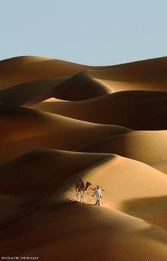 liwa deserts in abu dhabi - United Arab Emirates